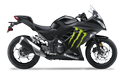 Kawasaki NINJA 300 Monster