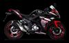 Moto Ronco RZ250 2018