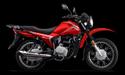 Zongshen RX-150